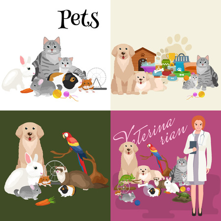 group of pets: Group of pets and veterinary, doctor with animals patient vector illustration