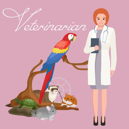 doctor and patient vector: Group of pets and veterinary, doctor with animals patient vector illustration