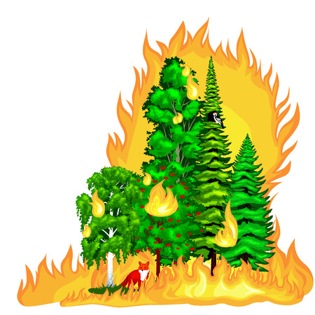 wildfire: Forest Fire, fire in forest landscape damage, nature ecology disaster, hot burning trees, danger forest fire flame with smoke, blaze wood background vector illustration. Wildfire burning tree in red and orange color.