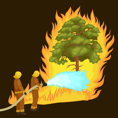 Firefighters in protective clothing and helmet with helicopter extinguish with water from hoses dangerous wildfire.Man fighter rescue helicopter put out the fire in forest landscape damage vector Illustration