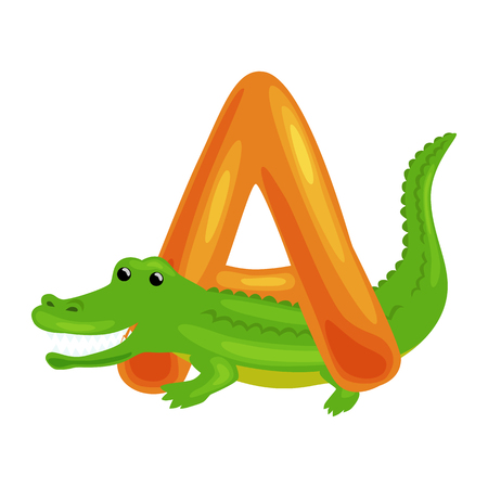 single animal: Aligator animal and letter A for kids abc education in preschool.Cute animals letters english alphabet. Cartoon animals alphabet for learning letters vector illustration. Single letter with wild animal Aligator