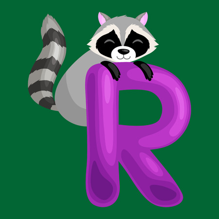 single animal: raccoon animal and letter R for kids abc education in preschool.Cute animals letters english alphabet. Cartoon animals alphabet for learning letters vector illustration. Single letter with wild animal raccoon Illustration