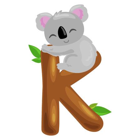 single animal: koala animal and letter K for kids abc education in preschool.Cute animals letters english alphabet. Cartoon animals alphabet for learning letters vector illustration. Single letter with wild animal koala
