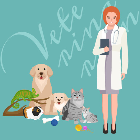 girl stethoscope: Group of pets and veterinary, doctor with animals patient vector illustration