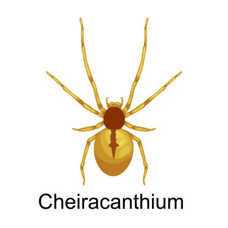 Flat spiders cartoon enge symbolen en spiders insect plat ontwerp. Set van platte spinnen cartoon gekleurde pictogrammen vector illustratie op een witte achtergrond. Spider vector. Spider iconen Stock Illustratie