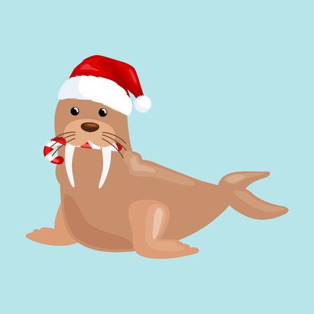 floe: Christmas walrus in a cap and with a candy in your mouth is and enjoys in the New Years Eve and Christmas and waiting for their gifts for the winter holidays vector illustration.