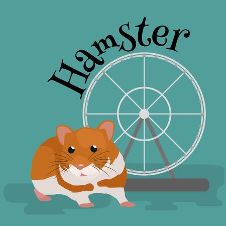 cheeky: Domestic animal hamster, isolated vector illustration pictograms