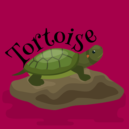 crawling creature: tortoise pet for home, reptile animal vector illustration
