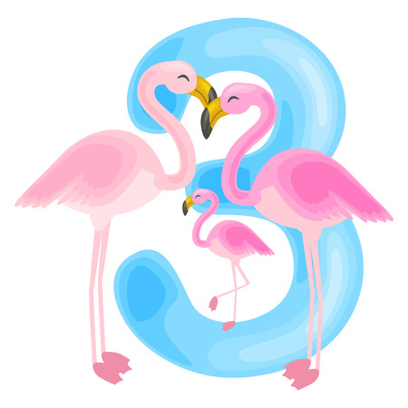 ordinal: ordinal number 3 for teaching children counting three flamingos with the ability to calculate amount animals abc alphabet kindergarten books or elementary school posters collection vector illustration Illustration