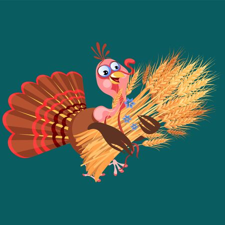 Cartoon thanksgiving turkey character holding spikelets, autumn holiday bird vector illustration happy greeting text on flyer or card on background Ilustração
