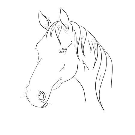 racecourse: Horse Head Vector