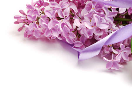 flower bunch: lilac flower bunch and satin ribbon Stock Photo
