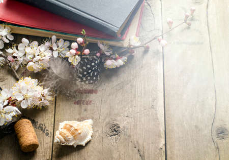 books on a wooden surface: still life with old books apricot blossom flowers and retro camera on a wooden surface