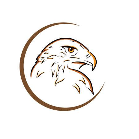 Esquema de cabeza de águila aislado en la ilustración de vector blanco