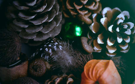 decorate: Vintage christmas background with pine cones closeup