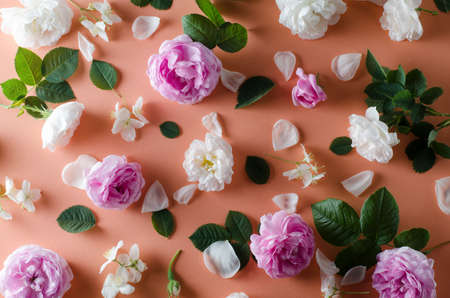 Background of tea roses flowers on a gentle pink background. Flat lay template. Stock Photo
