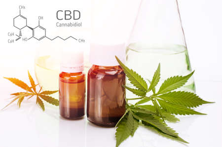 CBD Structural Formula. Medical, chemical theme with cannabis leaves, oil bottle and laboratory glass flasks behind on a white.