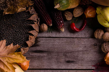 Autumnal rural frame with bright ripe pumpkins, big dry sunflower, apple quinces and nuts on an old wooden background with empty space for text. Foto de archivo