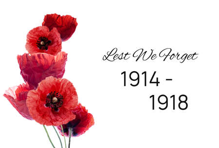 Remembrance day banner with red poppy flowers against white background. Memorial for vicrtims of World war 스톡 콘텐츠