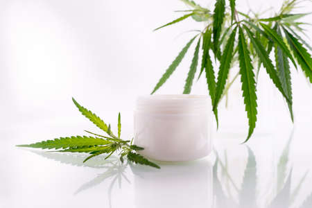 Natural cosmetics with cannabis oil. Mockup with a White clean jar with cosmetics cream and fresh green leaves of hemp.