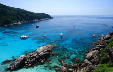 beautiful coral view at similan island thailand photo