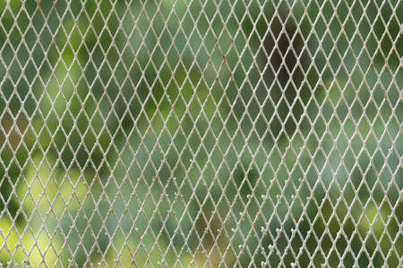 metal wire: metal wire mesh