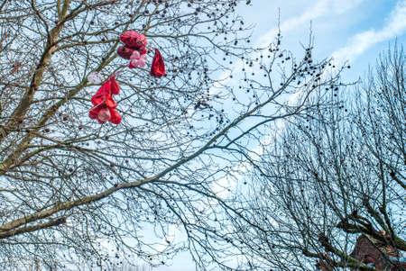 Ballon rouge collé sur l'arbre