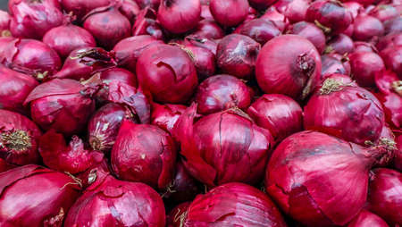 The new harvest onions red at local farm market, Fresh onions red. Onions red background. Ripe onions red.