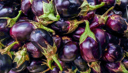 Fresh Eggplant vegetable with stem. Aubergine Ravaya suitable for background images.