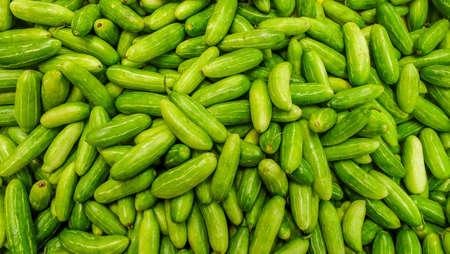 Raw Green Organic Tindora suitable for background images. Reklamní fotografie