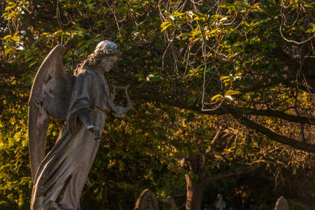 The wings of an angel of an ancient statue In North Sheen Cemetery Stock Photo