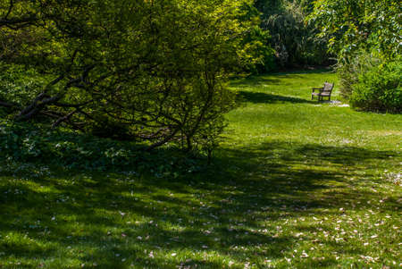 Wooden chair for relaxing in the garden Suitable for making background images. Stockfoto - 123188972