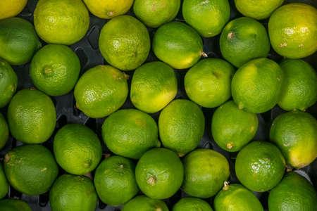 Keep fresh lemon sour vitamin C from fresh green beautifully arranged. abundant nature.