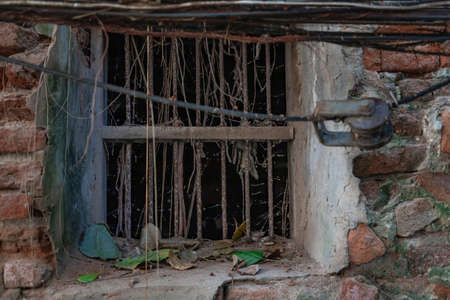 The pattern of tree roots growing on the old red brick wall of abandoned ancient building. Archaeological area. No focus, specifically. Foto de archivo