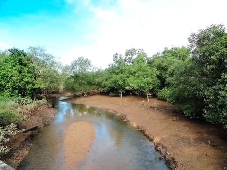 watercourse: Watercourse Stock Photo