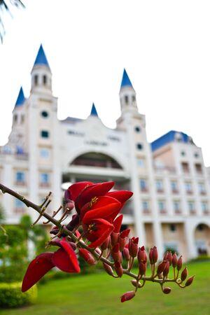 Hotels in Malaysia.