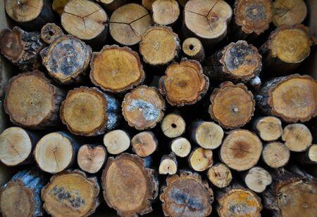 Timber Stock Photo - 10298681