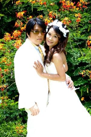 Portrait wedding Stock Photo