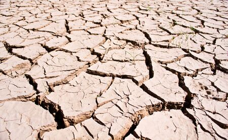Dry land texture, background
