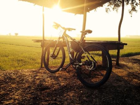 Bicycle evening Stock Photo