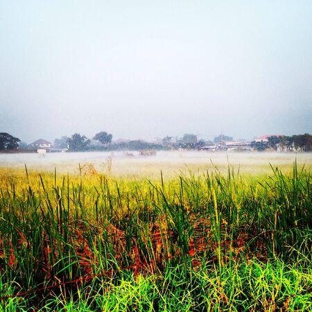 fog in thailand Stock Photo