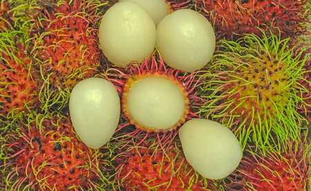 asia pacific: Thailand fruits rambutan in Asia pacific.