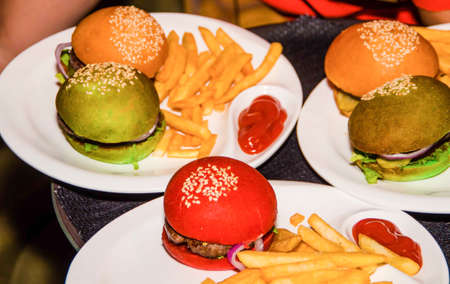 Juicy delicious colorful burgers on a white plate with french fries and red sauce Banco de Imagens - 91916696