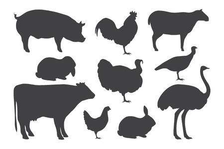 illustration des silhouettes d'animaux de ferme.