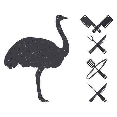 carniceria: Siluetas negras de un avestruz. Elementos del diseño de la carnicería. Aislado en un blanco. Ilustración del vector.