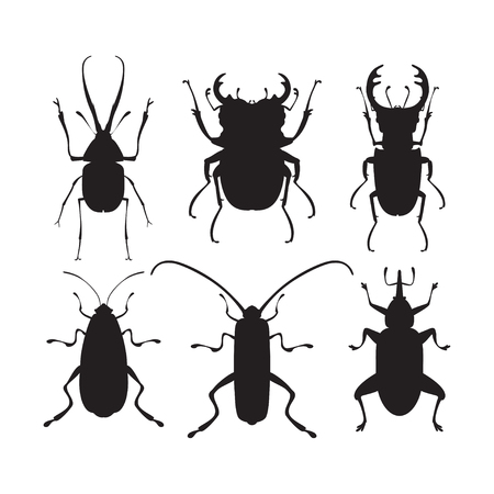 firebug: Vector illustration of bug silhouettes. Isolated on a white background. Beetle icons. Insect set.