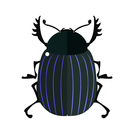 scarab: Scarab. Vector illustration of a scarab beetle. Isolated on a white background.