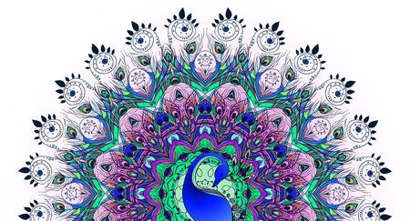 plumas de pavo real: Saludo Tarjeta hermosa con el pavo real. Marco de pavo real hecha en el vector. Tarjetas perfectas, o para cualquier otro tipo de dise�o, cumplea�os y otro mapa holiday.Seamless dibujado a mano con el pavo real.