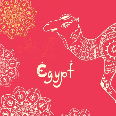 camel: Greeting Beautiful card with camel