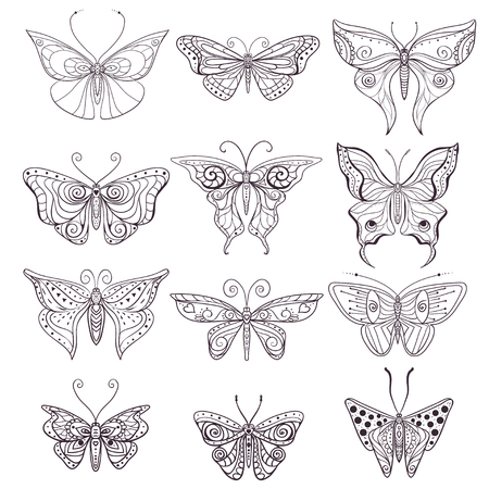 insect: Greeting card with Butterfly. Ornamental of Insect made in vector. Butterfly set. Insect collection for scrapbooking design, pattern or texture.